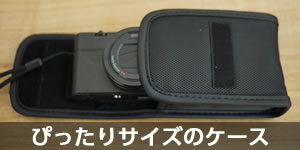 rx100-camera-case-eye