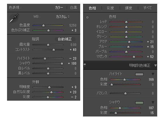 RX100で撮影したRAWデータ現像・閲覧ソフトウェアを使って写真を加工する