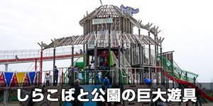 shirakobato-kobaton-eye