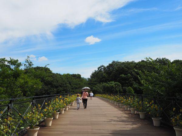 アンデルセン公園の太陽の橋