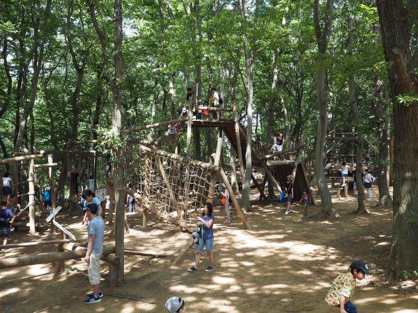 アンデルセン公園の木造アスレチック