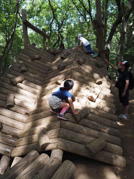 丸太の壁を登るアスレチック
